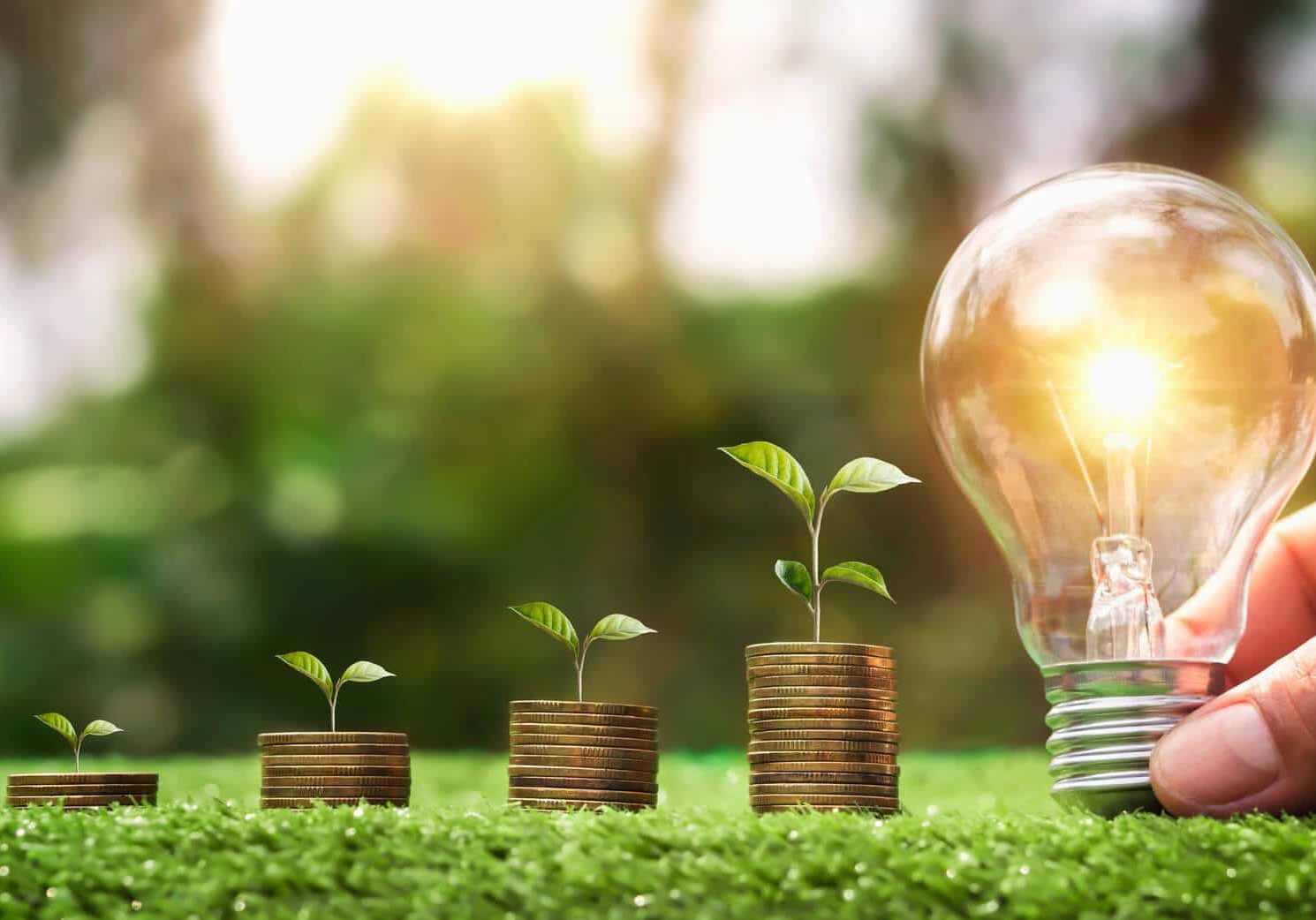 hand-holding-light-bulb-green-grass-with-young-plant-growing-coins-stack (1)